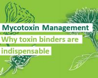 Mycotoxin Management: Why toxin binders are indispensable